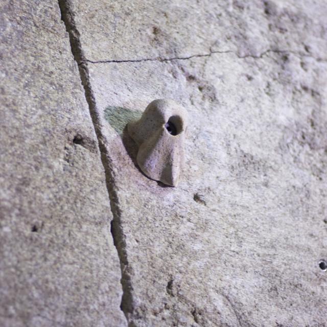 """Indoor climbing wall rock hold"" stock image"