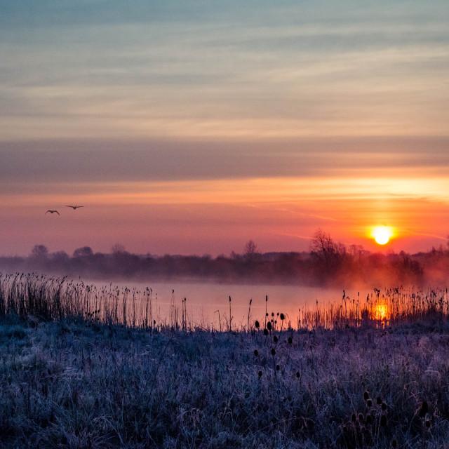 """""""Irthlingborough Lakes Sunrise"""" stock image"""