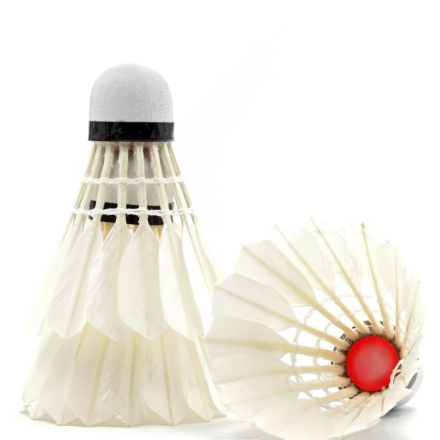 """Badminton Shuttlecock"" stock image"