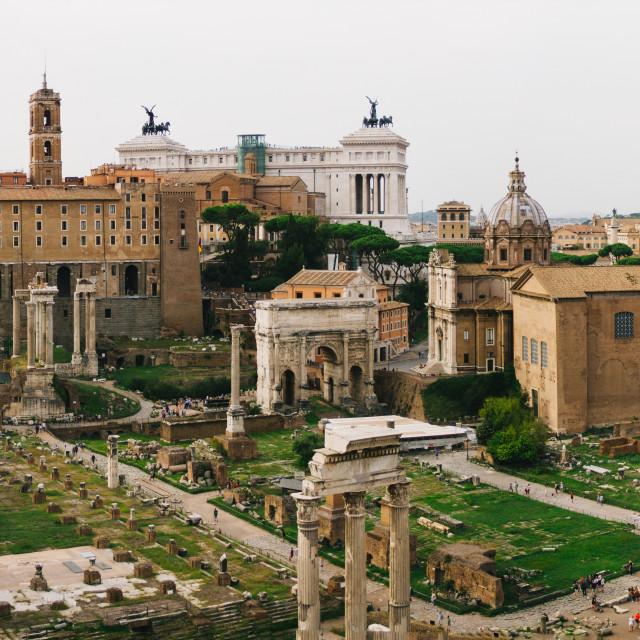 """""""Roman Forum Panorama"""" stock image"""