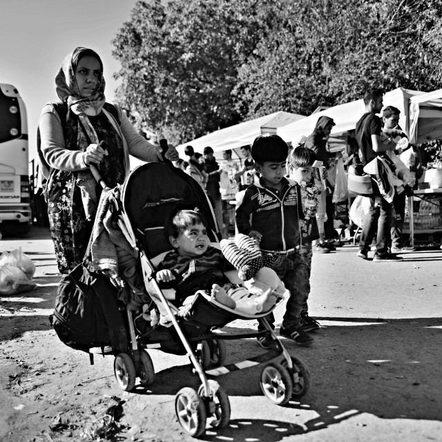 """refugees in Babska (Serbian - Croatina border)"" stock image"