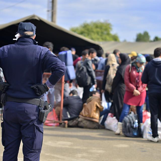 """refugees in Tovarnik (Serbian - Croatina border)"" stock image"