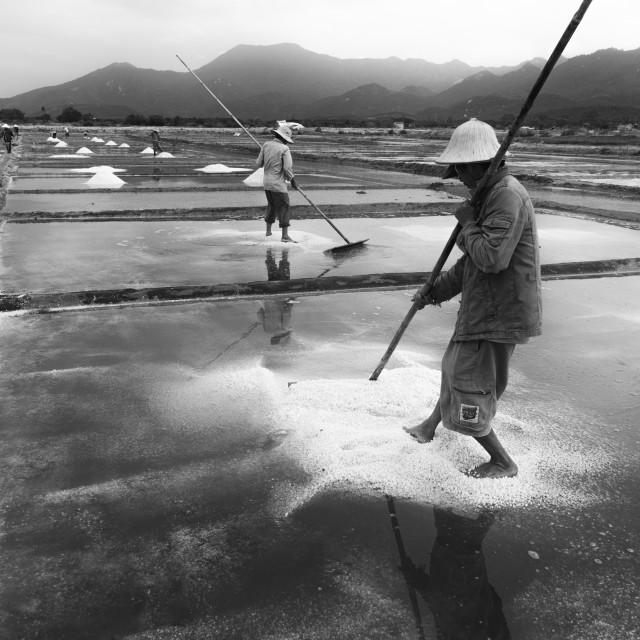 """Salt field."" stock image"
