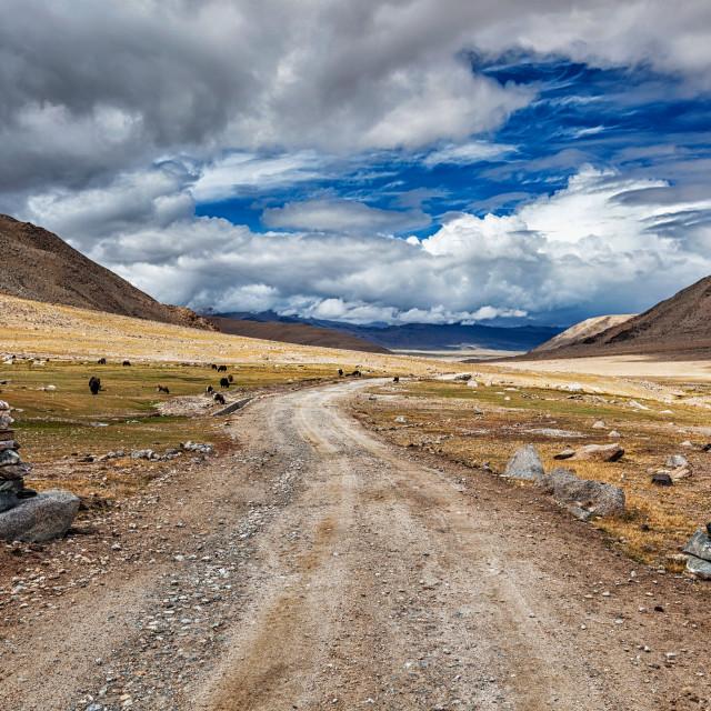 """""""Dirt road in Himalayas"""" stock image"""