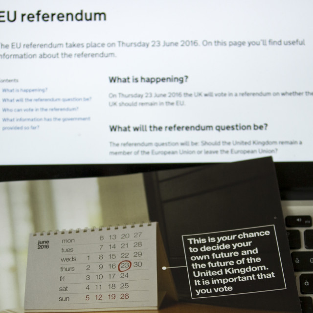 """""""EU Referendum A Once In A Generation Decision"""" stock image"""