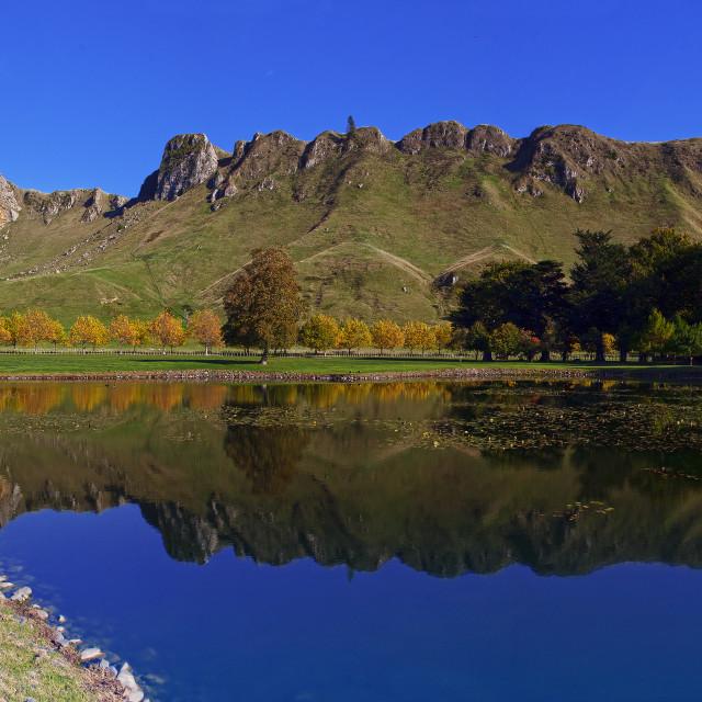 """The Te Mata Peak"" stock image"
