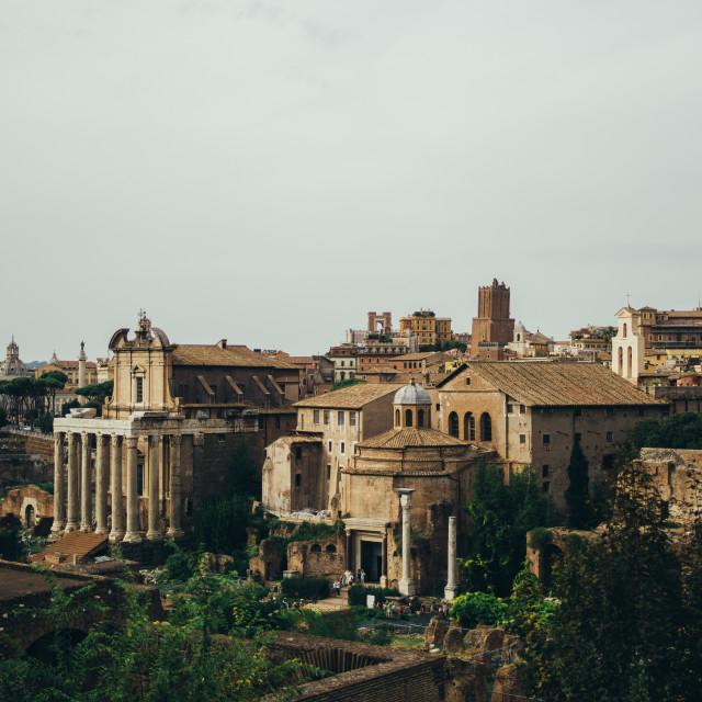"""Roman Forum"" stock image"