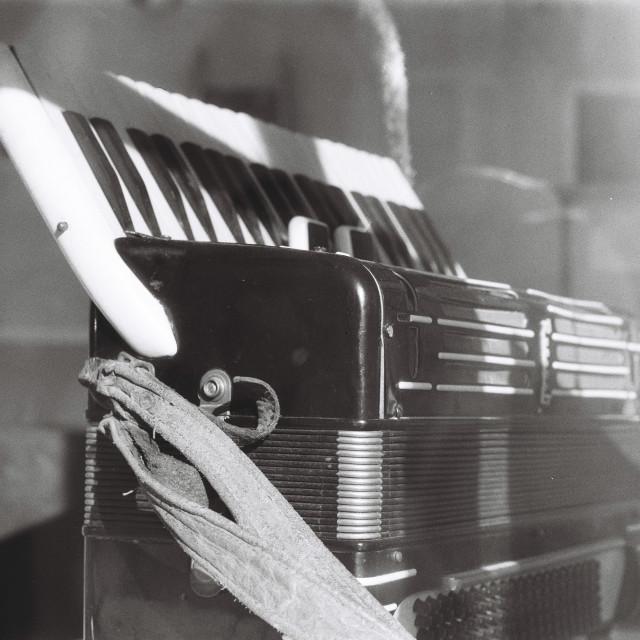 """Accordion in Shop Window"" stock image"