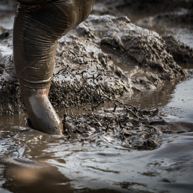 """Deep muddy water with feet splashing and climbing out of the mud in a race"" stock image"
