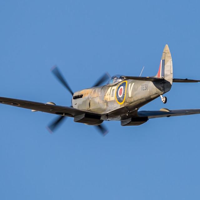 """Spitfire TE311"" stock image"