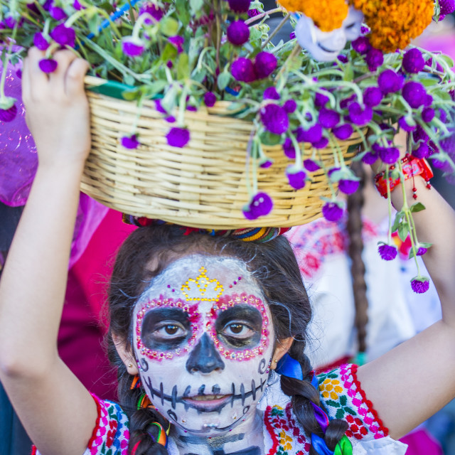 """Day of the Dead"" stock image"