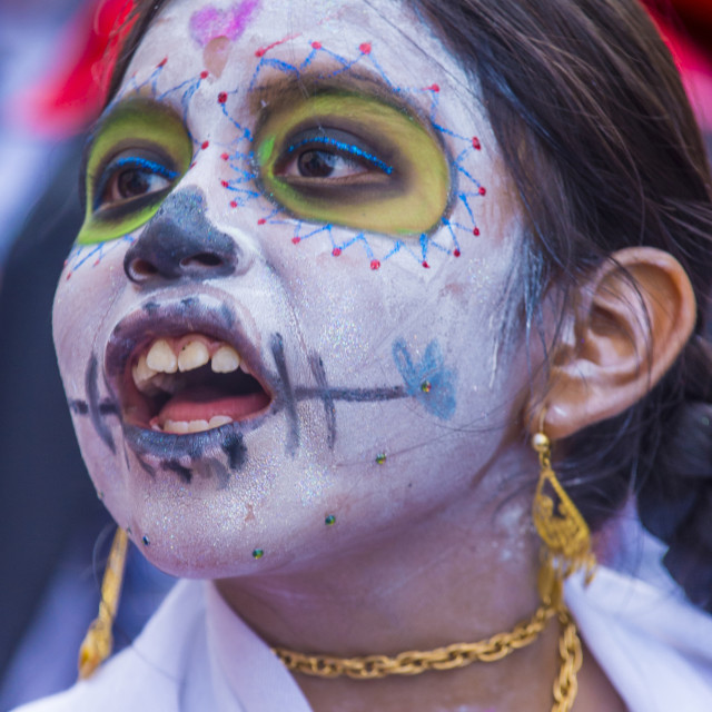 """""""Day of the Dead"""" stock image"""