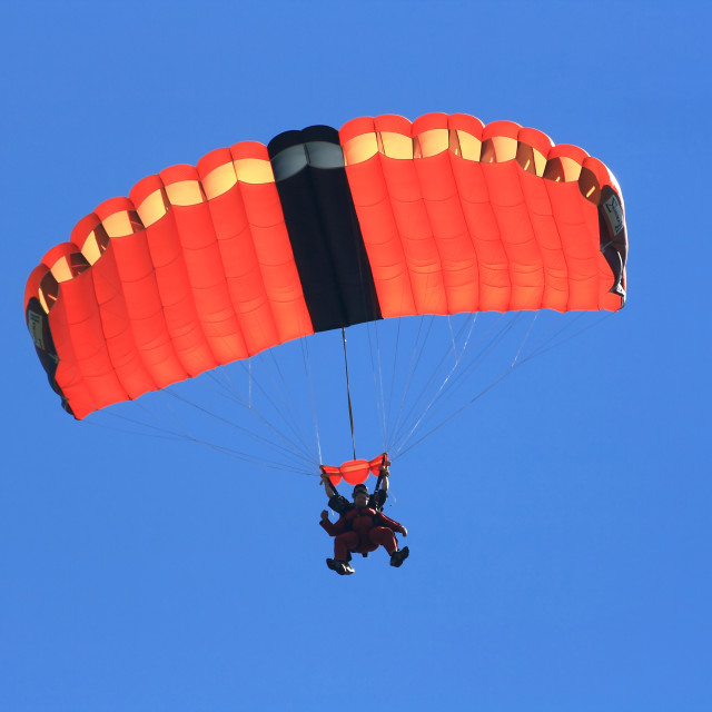 """Skydivers parachuting down to the Earth in tandem jump"" stock image"
