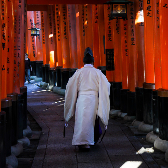 """Kannushi at the Shinto Shrine"" stock image"