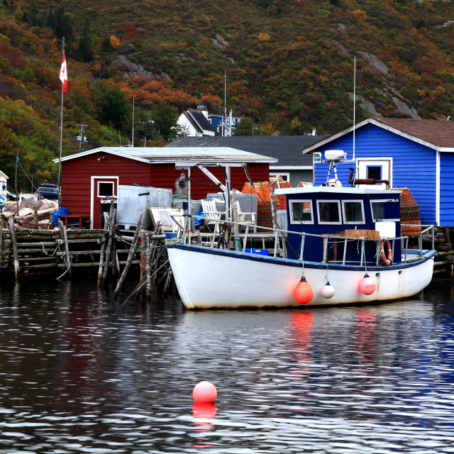 """""""Pier for crab fishing boats and equipment Petty Harbor, Newfoundland, Canada"""" stock image"""
