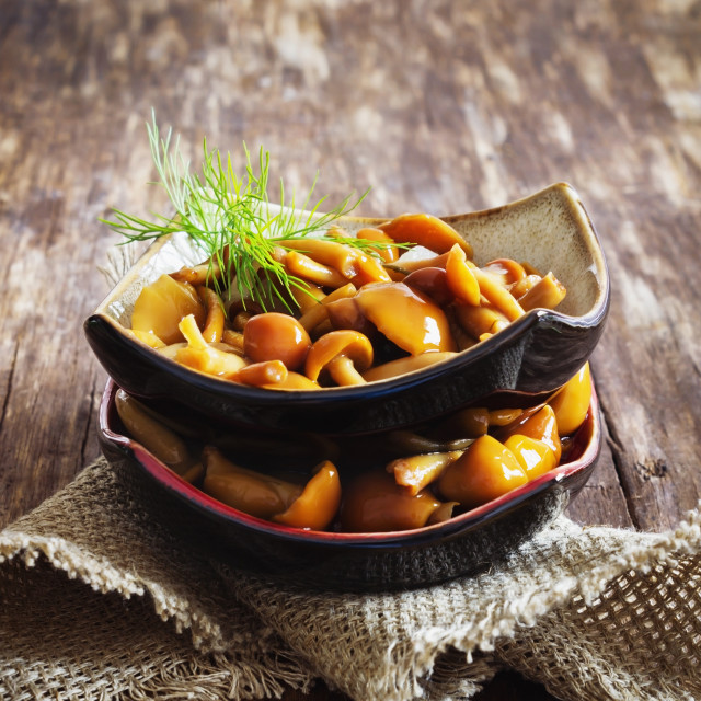 """marinated mushrooms in a bowl"" stock image"