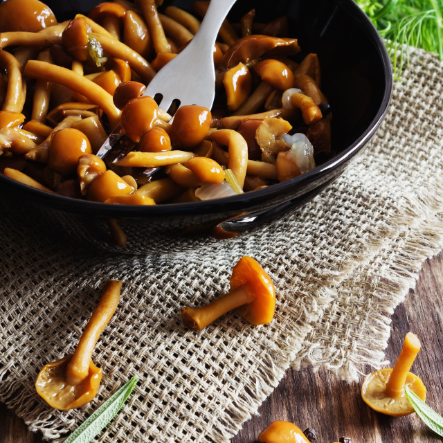 """delicious marinated mushrooms"" stock image"