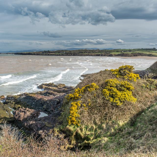 """""""Lligwy Bay from the Coastal Path"""" stock image"""