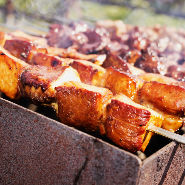 """shish kebab on metal skewers"" stock image"