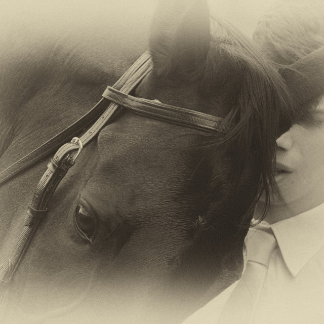 """""""My love is horse"""" stock image"""