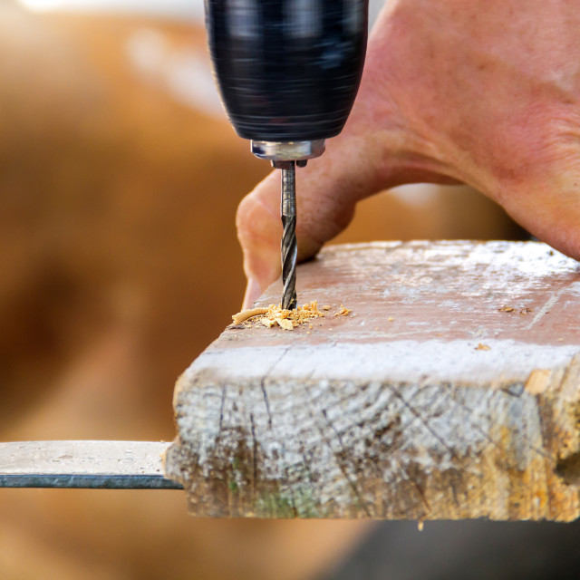 """Drill with sawdust"" stock image"