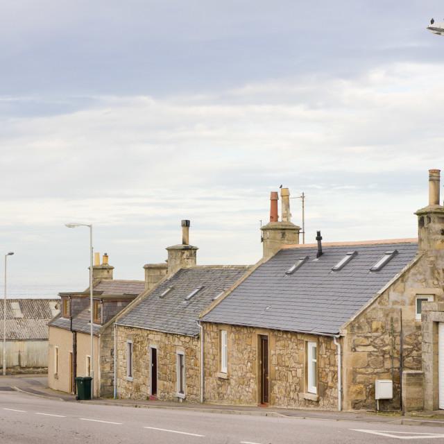"""""""Scottish bungalows"""" stock image"""