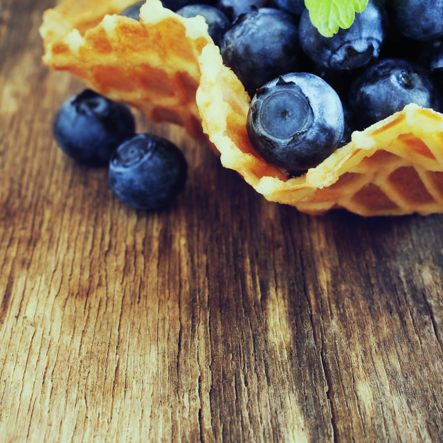 """ripe forest blueberries"" stock image"