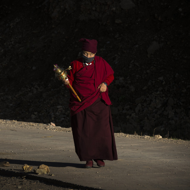 """A female monk on the way to the monastery."" stock image"