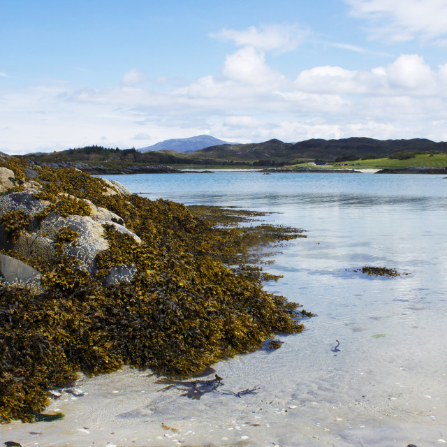 """Arisaig beaches"" stock image"