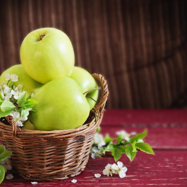 """ripe green apples"" stock image"