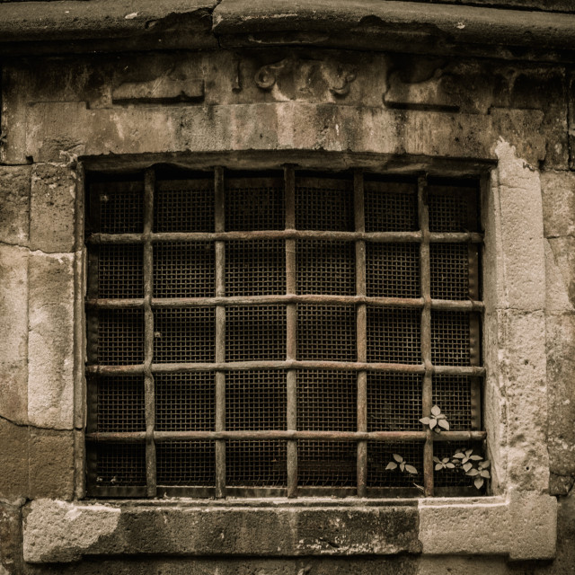 """Window with lattice in old building"" stock image"