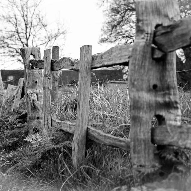 """""""Ye Olde Rustic Fence"""" stock image"""