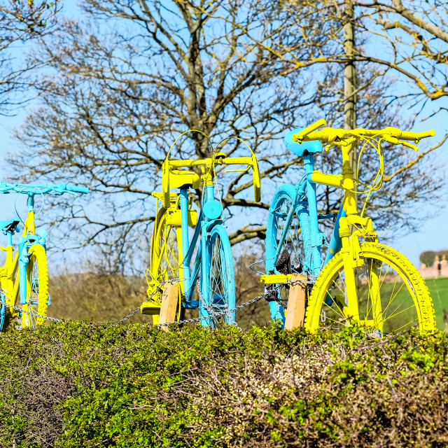 """Tour de Yorkshire 2016 painted bikes in hedge 2"" stock image"