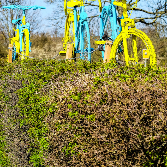 """Tour de Yorkshire 2016 painted bikes in hedge 3"" stock image"