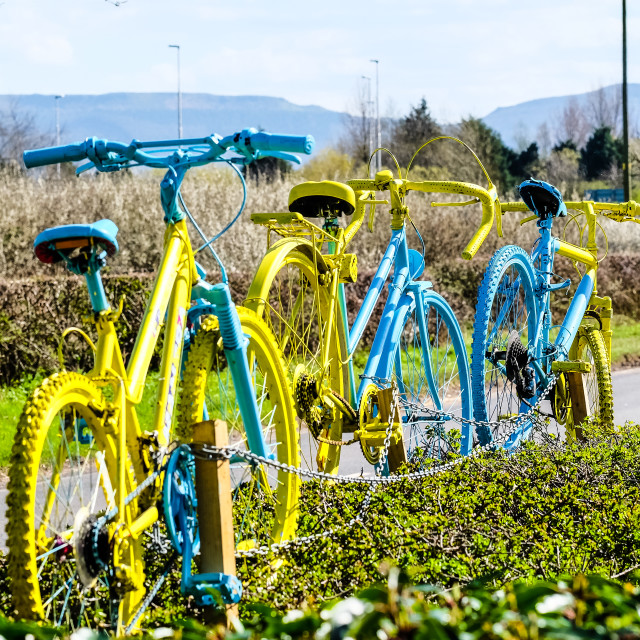 """Tour de Yorkshire 2016 painted bikes in hedge 4"" stock image"
