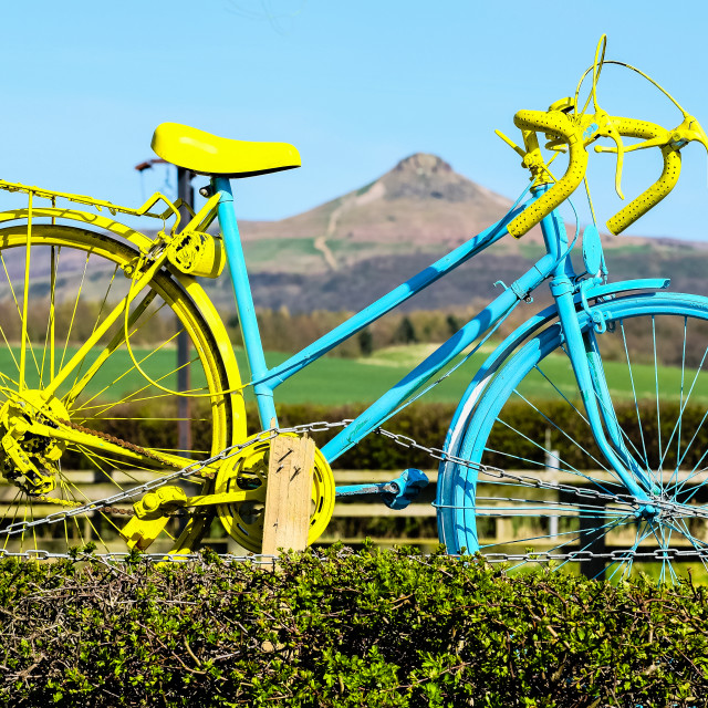 """Tour de Yorkshire 2016 painted bike in hedge frames Roseberry Topping"" stock image"
