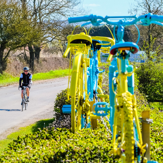 """Tour de Yorkshire 2016 cyclist passes painted bikes in hedge"" stock image"