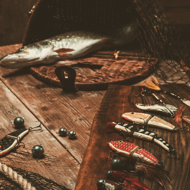 """""""Fishing tools and fresh pike on a wooden table"""" stock image"""