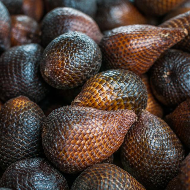 """""""Snake fruits"""" stock image"""