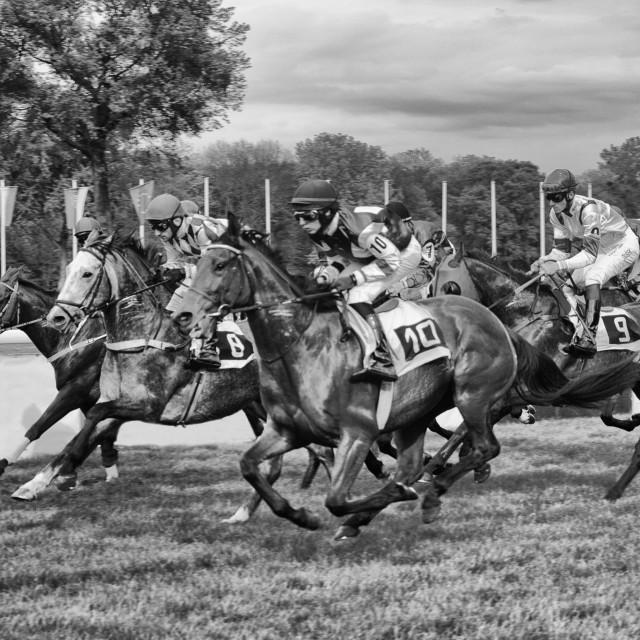 """Horseracing"" stock image"