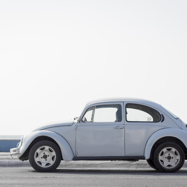 """Beetle by the sea"" stock image"