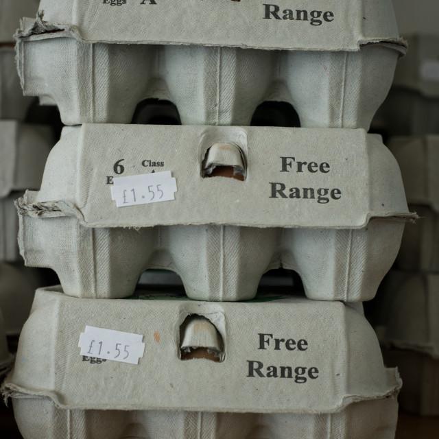 """Free range eggs stacked"" stock image"