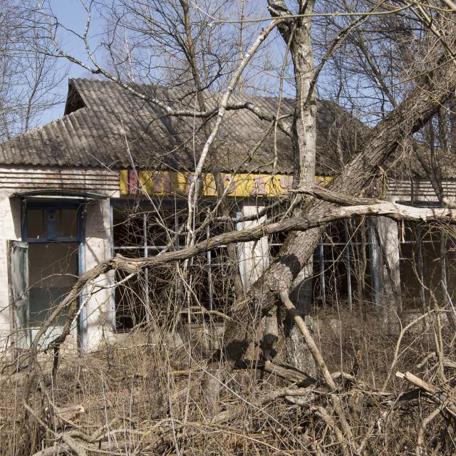 """Abandoned shop in the village of Zalissya, nr Chernobyl, Ukraine"" stock image"