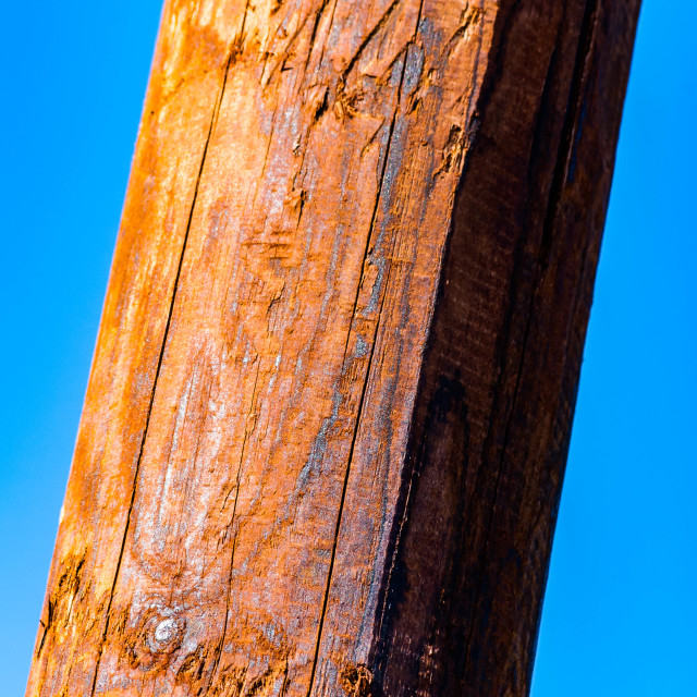"""""""Wooden textured pole and sky"""" stock image"""