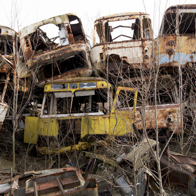 """""""Abandoned vehicles used in evacuation of Pripyat, nr Chernobyl, Ukraine"""" stock image"""