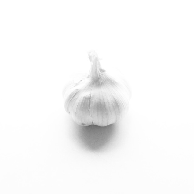 """garlic ghost"" stock image"