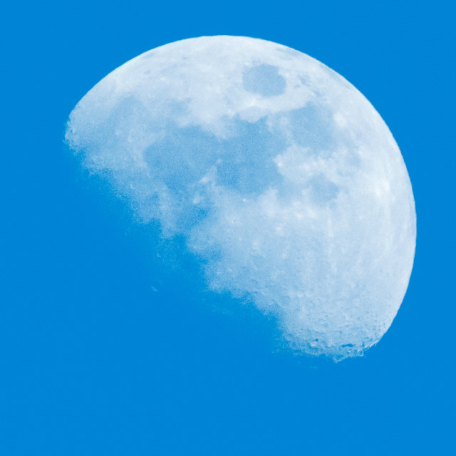 """Blue Moon"" stock image"