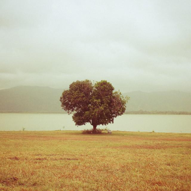 """""""Silent Lake"""" stock image"""