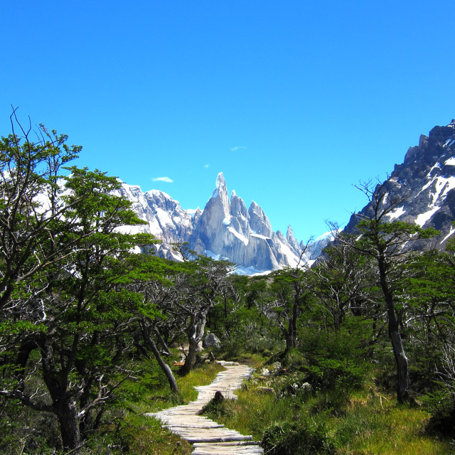 """The path to Cerro Torre"" stock image"