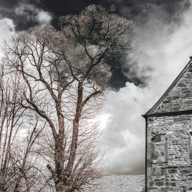 """""""Bleak House"""" stock image"""